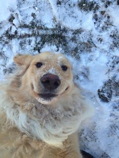 selfie in winter