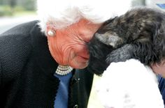 GRANDMA BARBARA BUSH GETS A KiSS FROM MISS BEAZLEY (2004-2014) ~ President and Mrs. George W. Bush lost their precious Miss Beazley this weekend. Miss B. and the famous First Dog, Barney Bush, have gone to their eternal rest, and wait at the Rainbow Bridge.