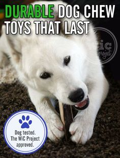 If you have a dog that loves to chew, but can't find a toy that survives the chewing, check out these durable dog chew toys that last. Dog tested. The WiC Project approved!