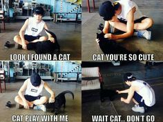 Jimin and cats... so cute :33
