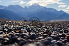 """""""Early bird catches the worm"""" as they say. After waking up early and heading up high to get some good panos in we came down to this long stretch of pebbly beach. So happy with how this turned out with Mt Fyffe and the Kaikoura Ranges in the background #photography #DepthofField #landscape #nature #mountains #beach"""