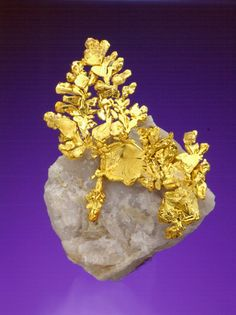 Native Gold on Quartz - Eagle's Nest Mine, Mariposa County, California, USA Size: 5.1 cm