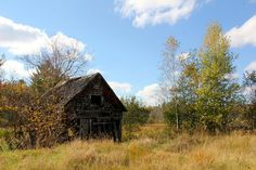 Who Goes There ~ A little farm building just outside of Dover-Foxcroft, ME.  Photo by Daryne Rockett.