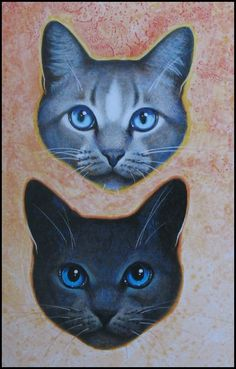 BIG pictures of Bluestar, from warriors | Cats of the Clans by Erin Hunter - Reviews, Discussion, Bookclubs ...