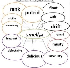 Collocations with the word 'smell'.