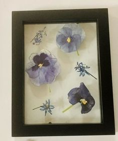 A delicate flower, the pansy is my quintessential start of spring! In my mind pansies spark the warmer air and receding snow no groundhog could predict. I LOVE pressing pansies as their flowers dry easily between books. Looking for your own spring keepsake? DM me or click the link in my bio. Drying Flowers, Cut Flowers, Natural Ecosystem, Spring Starts, Cut Flower Garden, Pressed Flower Art, Vertical Gardens, How To Preserve Flowers, Monarch Butterfly