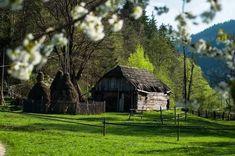 Primavera en Bucovina,Romania