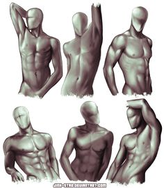 +MALE BODY STUDY V+ by ~jinx-star on deviantART