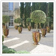 Our team found themselves in this Parisian courtyard years ago...this shot was great inspiration for planters we sell today!