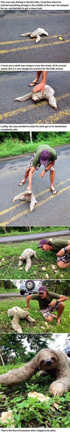 This Guy Was Driving When He Noticed Something Strange In The Road. Look At What He Found... -   Misc