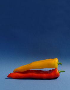 Bio Box – das Abo mit frischem Bio Gemüse - Mahler & Co - Feine Biowaren Neutral, Box, Stuffed Peppers, Vegetables, Porto, Organic Vegetables, Swiss Guard, Harvest, Organic Beauty
