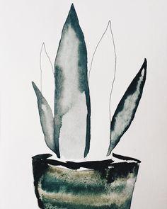 watercolor potplant