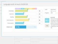 Language audit form by Arnaud Lemercier