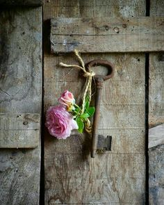 This Ivy House: Archive Love Flowers, Beautiful Flowers, Bouquet Flowers, Vintage Flowers, Old Keys, Aesthetic Drawing, Flower Quotes, Rose Cottage, Aesthetic Vintage