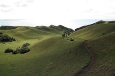 Corners like the communal grazing area of Racu a' Payaman ( still from Batanes, Philippines) seem to come right out of The Lord of the Rings. Photo by Bert Canopen