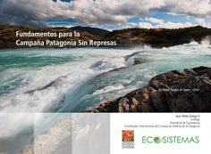 Fundamentos para la Campaña Patagonia Sin Represas   Ecosistemas Patagonia, Chile, Water, Outdoor, Gripe Water, Outdoors, Chili, Outdoor Living, Garden
