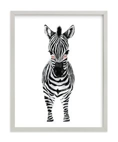 """baby animal.zebra"" - Limited Edition Art Print by Cass Loh in beautiful frame…"