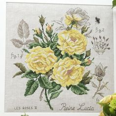 Étude à la rose «Reine Lucia» (maxi-grille) à broder au point de croix les brodeuses parisiennes