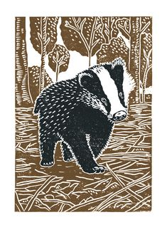 Young Badger A3 poster-print £12.00 Linocut Prints, Poster Prints, Magical Images, A Level Art, Badger, Types Of Art, Medium Art, Pet Birds, Amazing Art