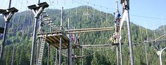 School Sports, Salzburg, Utility Pole, Fair Grounds, Travel, Viajes, Destinations, Traveling, Trips