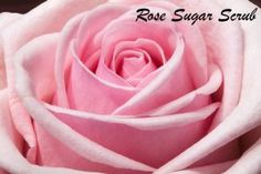 DIY Mother's Day Gift - Rose Sugar Scrub Mother's Day is just around the corner! Instead of buying a gift…