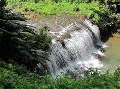 Les plus belles cascades de Martinique – Carnet d'un Antillais Les Cascades, Blog Voyage, Niagara Falls, Travel Tips, Waterfall, Photos, 1, Grace, Nature