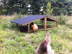 Hen's love being outside so its important to provide some outdoor shelter from the sun and rain for them. Our solution is The Large Hen Shelter. Backyard Poultry, Chickens Backyard, Chicken Shelter, Rain Shelter, Barn Loft, Outdoor Shelters, Chicken Runs, Hens, Farm Life