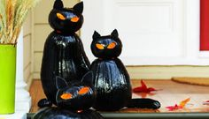 Nothing represents the costume- and candy-filled holiday better than black cats.