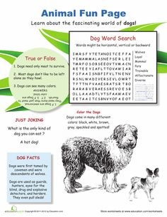 Law Of Sines Cosines Worksheet Wild World Of Wolves  Worksheets Montessori Materials And Word  Mathematics Free Worksheets with Year 6 Maths Worksheets To Print Pdf How Much Do You Know About Mans Best Friend This Fun Worksheet Is  Jampacked With Fun Facts About Dogs Arc Length Worksheet Excel
