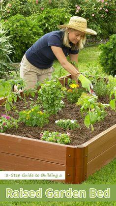 Purin d 39 ortie recette et utilisations que votre potager va adorer jardinage potager et jardins - Purin d ortie desherbant ...