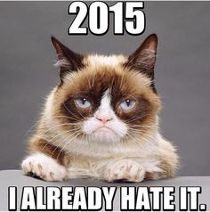 2015 - I already hate it
