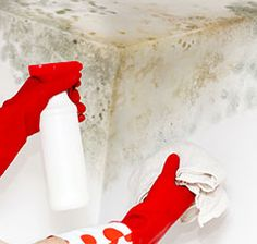 To remove small areas of mold (it can be black, brown, green, yellow or white and may have an acrid smell), scrub them with a mixture of one-eighth cup of laundry detergent, one cup of bleach and one gallon of water.  Note: Mold on a wall often is a sign that mold is also within the wall, so you'll need to consult a professional about removal, especially if the area is larger than 10 square feet.