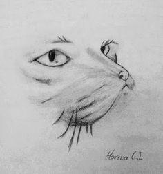 Palabras en el tiempo: Dibujo de un gato