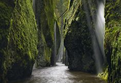 10 Incredible Nature Shots in 2014 National Geographic Traveler Photo Contest - Columbia River Gorge, Oregon The only way I could capture this special moment of the weeping walls was after an incredibly torrential rain. As I stood in awe of the scene, the sun broke through for a few seconds and cast God's rays into the side lit waterfall. Photo and caption by Peter Lik / National Geographic Traveler Photo Contest