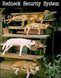 Redneck Home Security System. And if you get past the dogs, well you know mama will greet you with a shotgun, right?