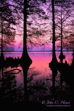 Sunset, Reelfoot Lake, Tennessee