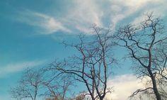 sky will tell u story