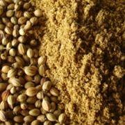 Indyjskie przyprawy stosowane w kuchni indyjskiej.