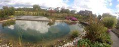 Teichlandschaft für Genießer