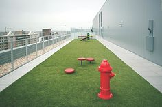 City Market at O apartments in Washington, D.C., have a 200-f00t-long (60 m) rooftop dog park with a water fountain and fire hydrant. (City Market at O)