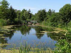 Webster Arboretum in Webster, NY
