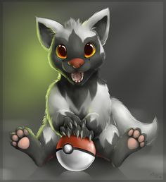 poochyena dark type pokemon