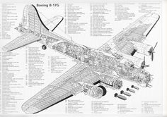 Seriously, more than likely all the  warbird cutaways you will ever need! - http://www.warhistoryonline.com/war-articles/75471.html
