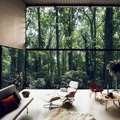 Simply perfect #interior #house #wood #relax #design #modern #interior #interiordesign #nice  #style  #windows  #light #appartment #insta #inspiration #bath #shower #glass #instainterior #interiorinspiration #amazing #eameschair #eames #lounge #loungechair #chair #dream #cactus #skin #forrest #green