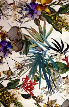 this is THE MOST amazing tropical print! would love a short sleeved button-up shirt in this print