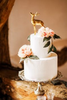 Elegant 2-tier wedding cake with a gold dear caketopper. Photography by Naomi Kenton.