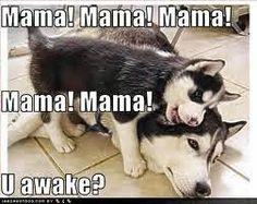 mama mama mama