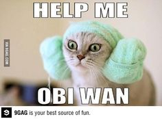 Obi Wan help me! Not sure why this was so hilarious, but it is! ;)