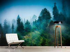 Raumansicht Wohnzimmer Fototapete Geheimnisvoller Wald