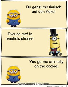 funny picture & # you go to the Keks. Minion Jokes, My Minion, Happy Minions, Charmed Book Of Shadows, Charmed Tv, Minion Party, Tabu, Bff Pictures, Life Humor